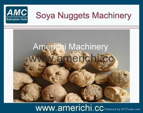 大豆組織蛋白生產設備 1