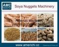 大豆组织蛋白生产设备 2