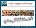 大豆组织蛋白加工机械