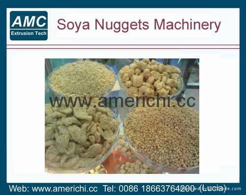 大豆组织蛋白加工机械 2