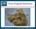 大豆组织蛋白加工机械 3