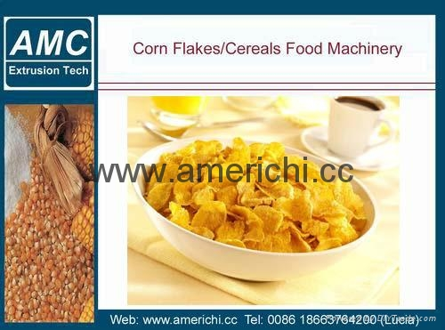 玉米片設備 4