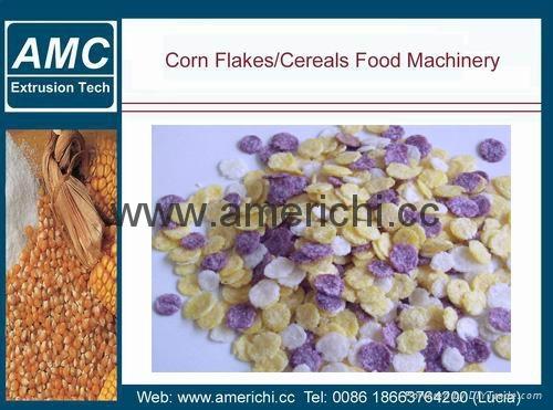 玉米片設備 5
