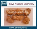 Texture soya protein food machines