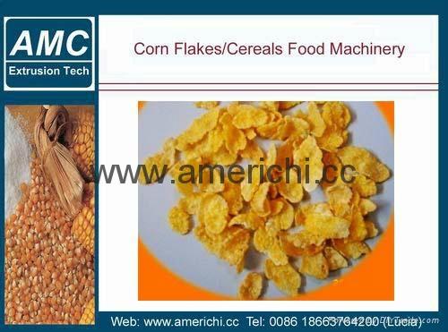 玉米片生产线 4