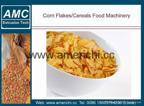 玉米片生產線 5