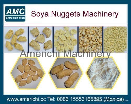 組織蛋白加工設備 1