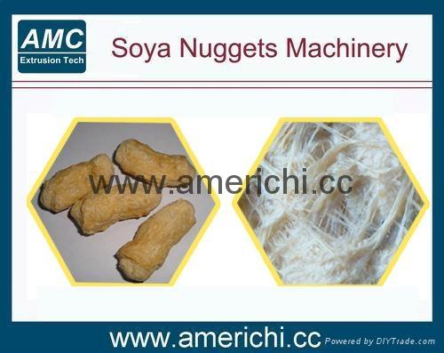 大豆蛋白机 1