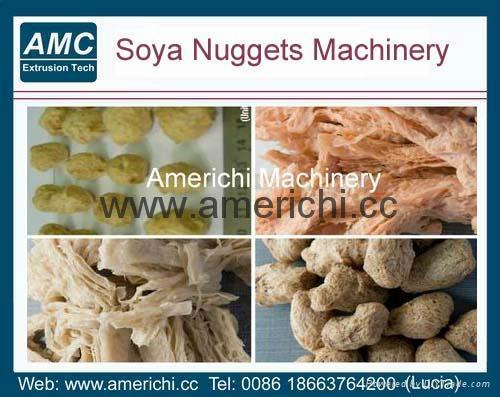 大豆蛋白机 2