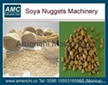 Soya Meat Machines