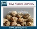Soya Peanut Protein Machine