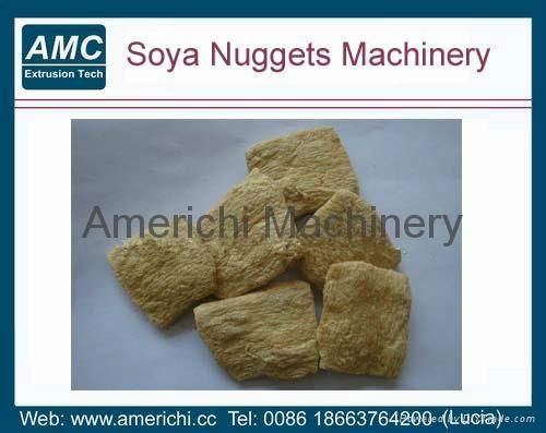 大豆組織蛋白生產線 4