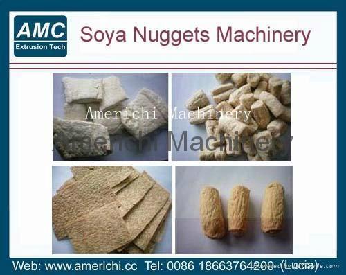 大豆組織蛋白生產線 5