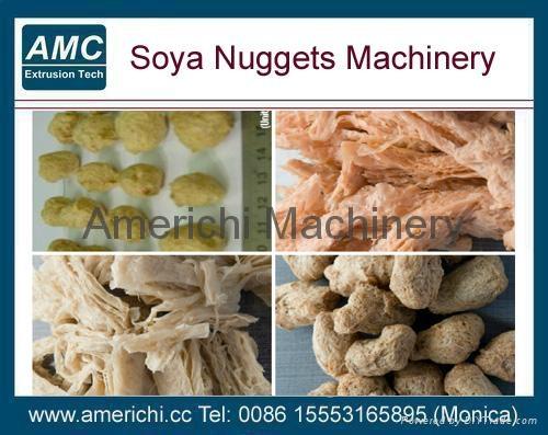 大豆花生蛋白設備 1