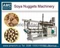 Meat Analogous Making Machinery