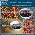 早餐穀物玉米片設備 10