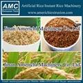 人造米设备 3