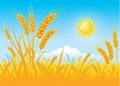 PGE是解决地球上人口 、居住和粮食紧张的唯一途径