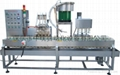 Fully automatic liquid filling line