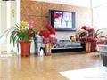 广东软木墙板地板 1