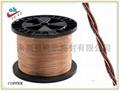 Copper Lead Seal Wire 4