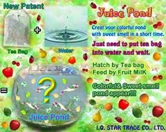 Juice Pond-Artemias