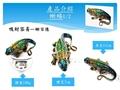 lucky lizards box