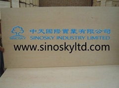 low price plywood,high quality plywood