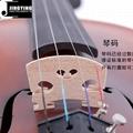 JYVL-E900 Plywood Student Model Violin