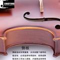 JYVL-E800 Student Model Violin