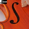 Over 15 years wood, Handcraft, Hand painting JYVL-M500 Middle Grade Violin 4