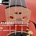 Over 20 years wood/Handcraft/Hand painting JYVL-P100 High Grade Violin 6