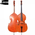 2018 hot sale JYBD-E800 solid wood double Bass