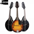 8 Strings Basswood Mandolin 1