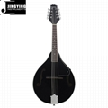 8 Strings Basswood Mandolin 6