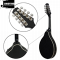 8 Strings Basswood Mandolin 12