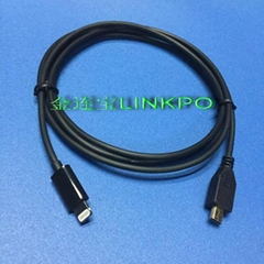 lightning Audio Cable