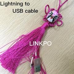 Lightning数据线