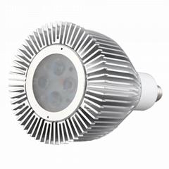 SP-E11-4x2W Spotlight