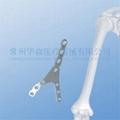 Distal Humeral Y-plate II