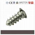 Mini Revisition Screws