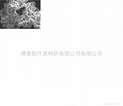 交聯聚維酮 (熱門產品 - 2*)