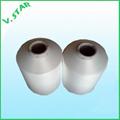 Polyamide (PA) texture yarn 100D/36F/2