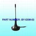 GSM  Antenna 1