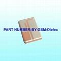 GSM Dielec Antenna