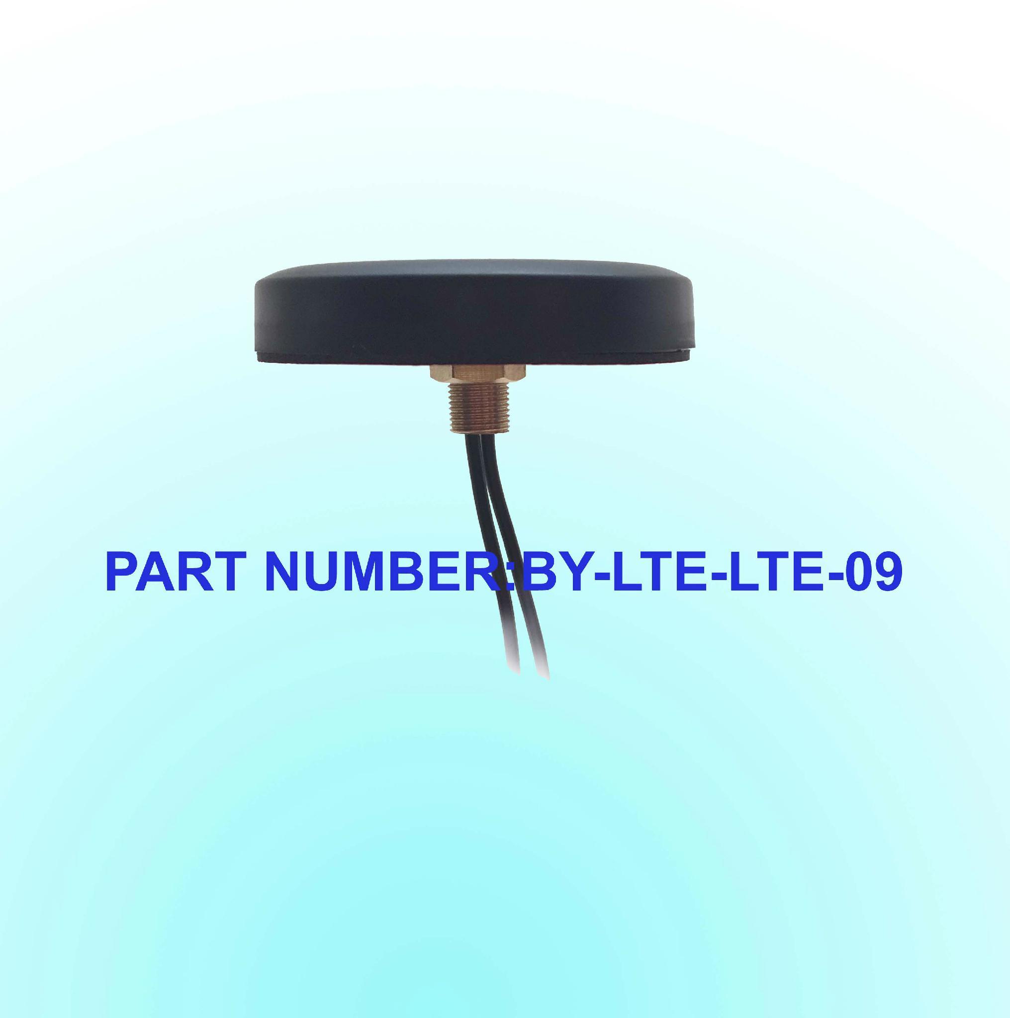 Lte/4G Screw Mounting Antenna