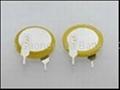 CR2032/1VB Button Cell