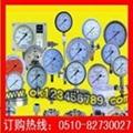压力表   耐震压力表 不锈钢压力表 真空压力表 压力计 1