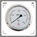 耐低温压力表