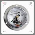 耐震电接点压力表系列